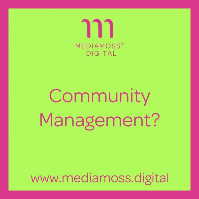 Mediamoss Digital Social Media Agentur Dortmund